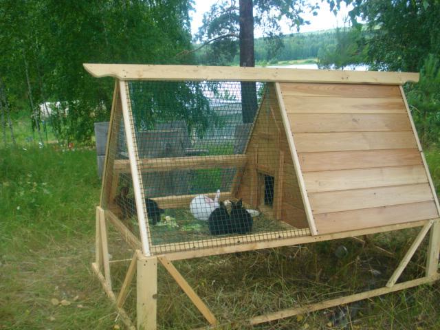 Построить домик для кролика
